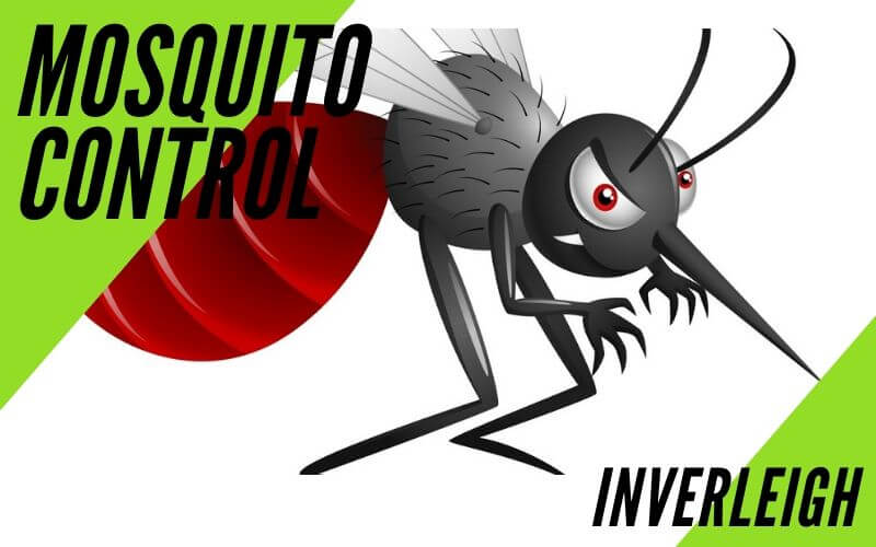 Mosquito control Inverleigh