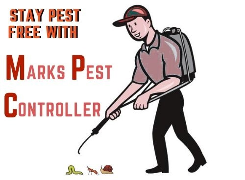 stay pest free with marks pest control