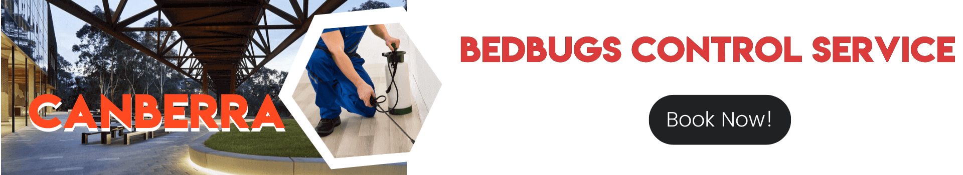 Bedbugs Control Canberra