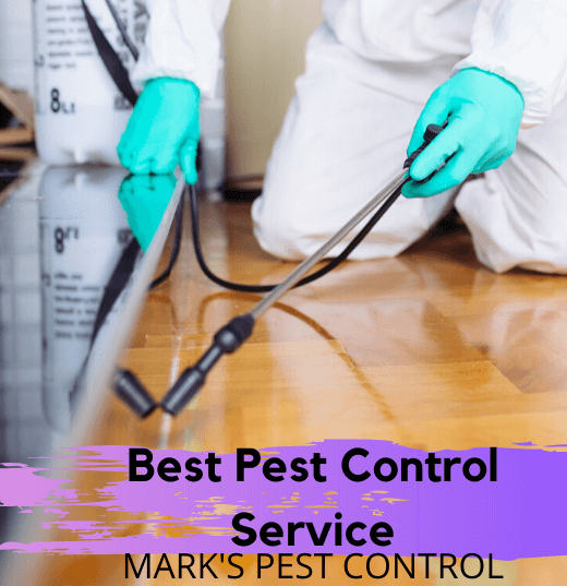Best Pest Control Service by Mark's Pest Control