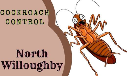 Cockroach Pest Control North Willoughby