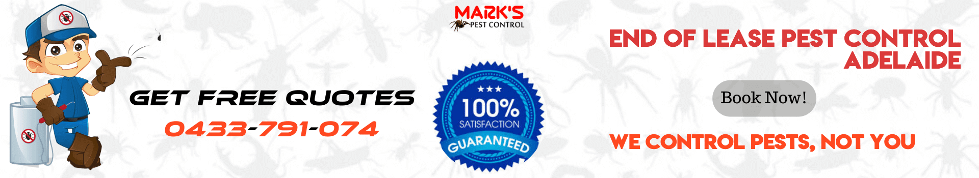End Of Lease Pest Control Adelaide