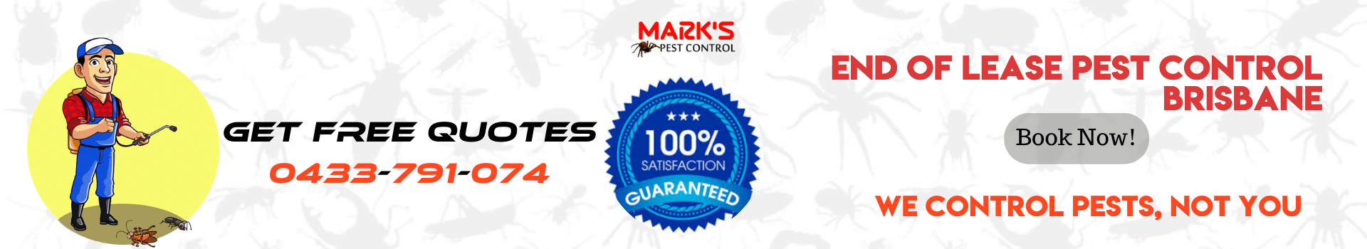 End Of Lease Pest Control Brisbane