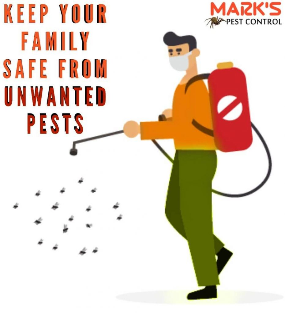 keep your family safe from
