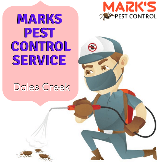 Marks Pest Control Dales Creek