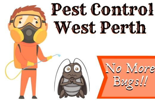 Pest Control West Perth