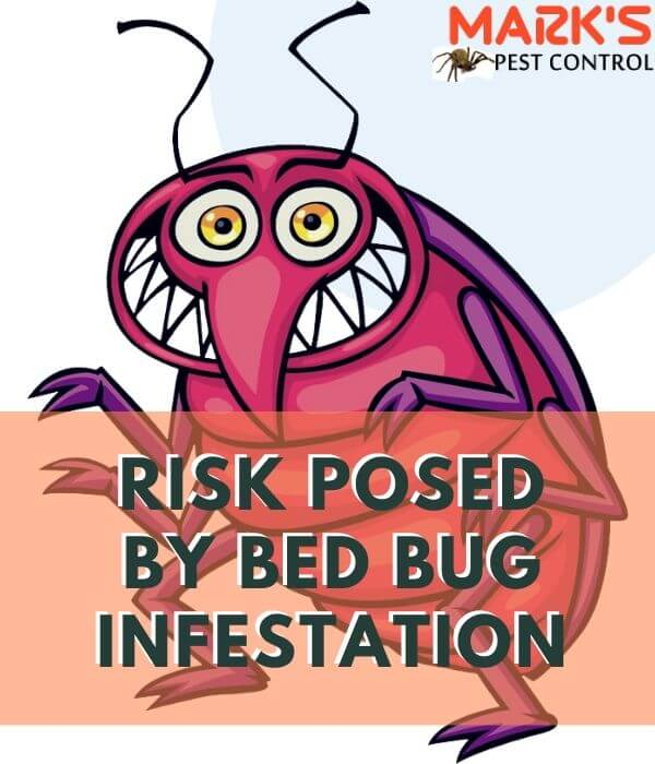 RISK-POSED-BU-BEDBUG-INFESTATION