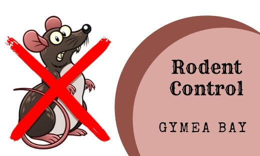 Rodent Pest Control Gymea Bay