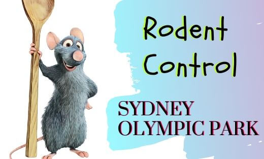 Rodent Pest Control Sydney Olympic Park