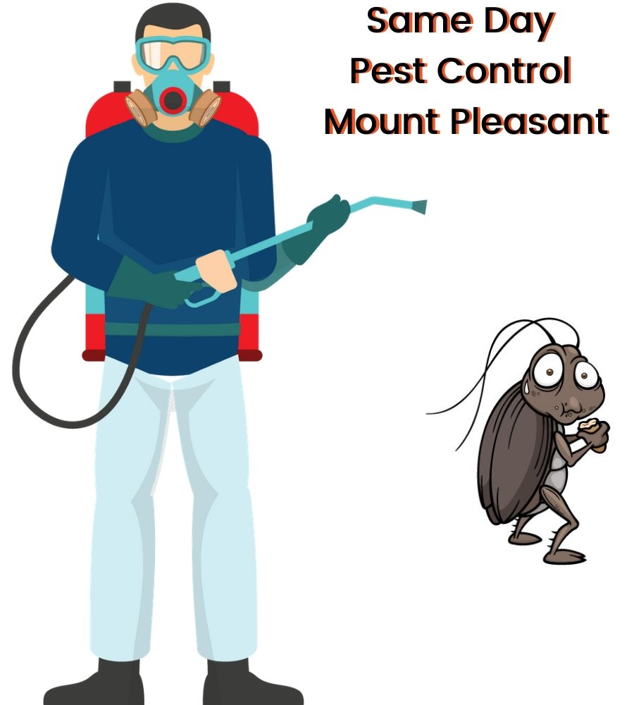 Pest Control Mount Pleasant