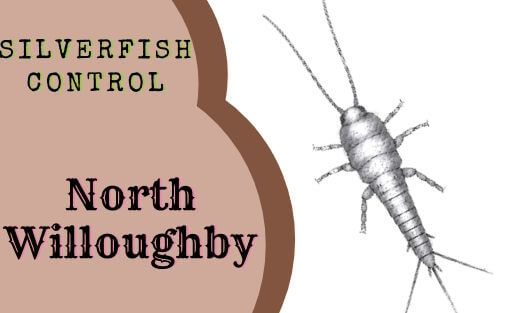 Silverfish Pest Control North Willoughby
