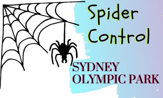Spider Pest Control Sydney Olympic Park