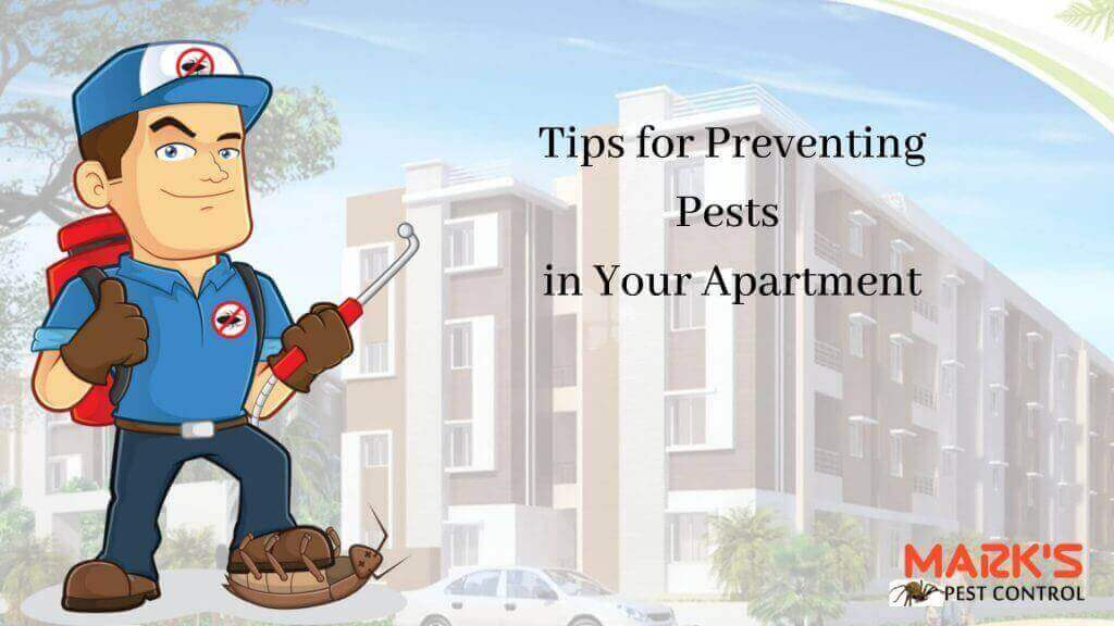 tips for pest prevention