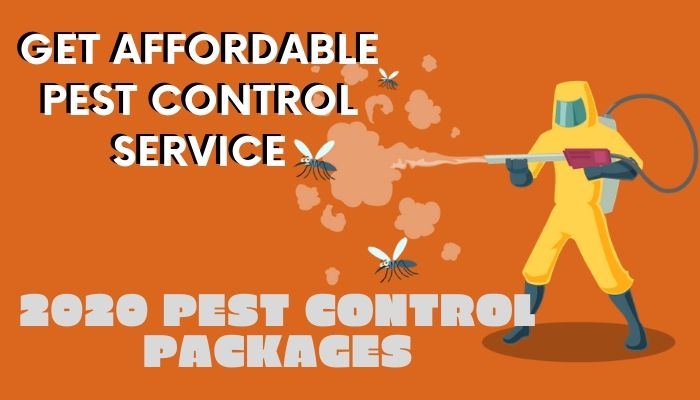 Pest Control Affordable Price