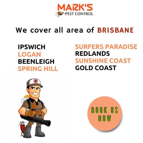 we cover all area of brisbane