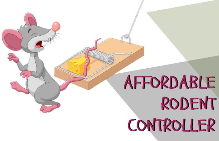 affordable rodent controller