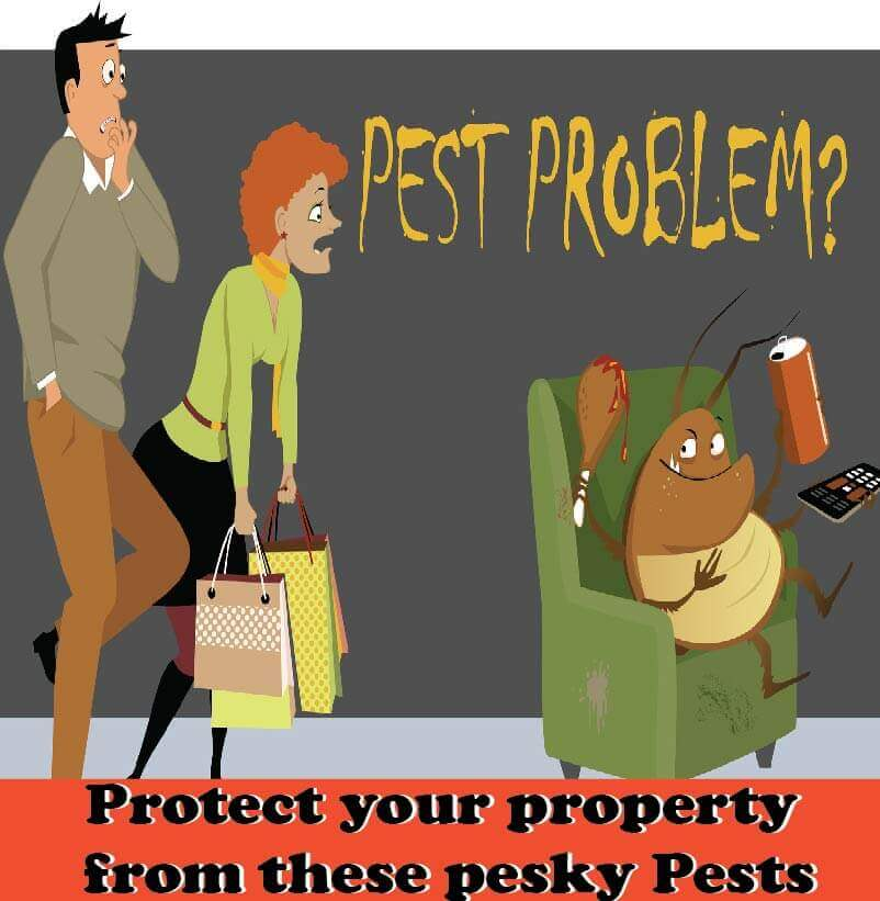 Pest control Canning Vale