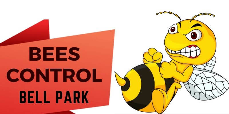 Bees control Bell Park