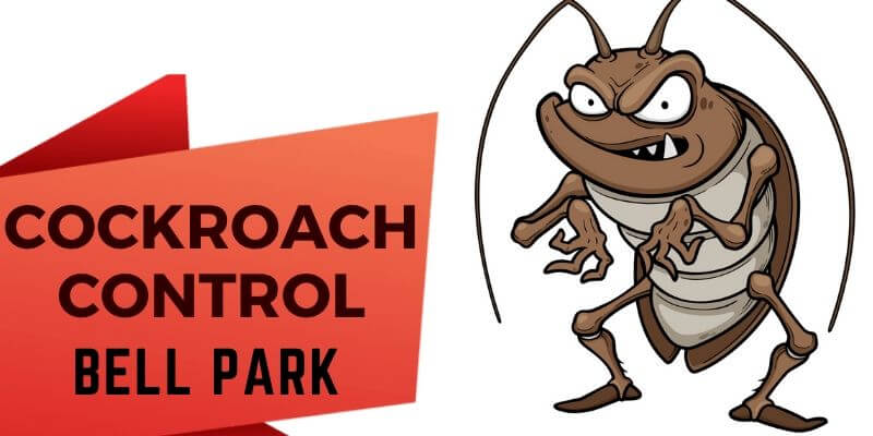 Cockroach Control Bell Park