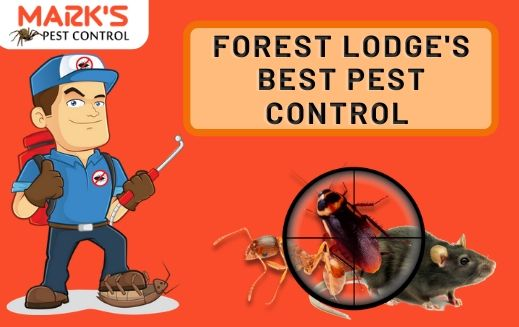 Forest Lodge Best pest Control