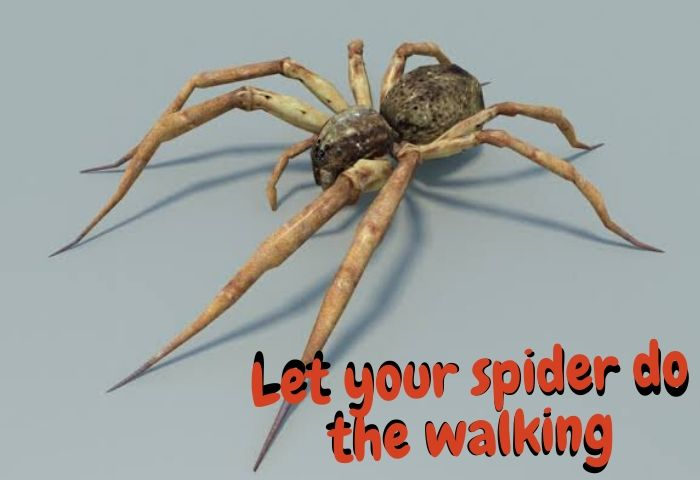 let your spider do walking