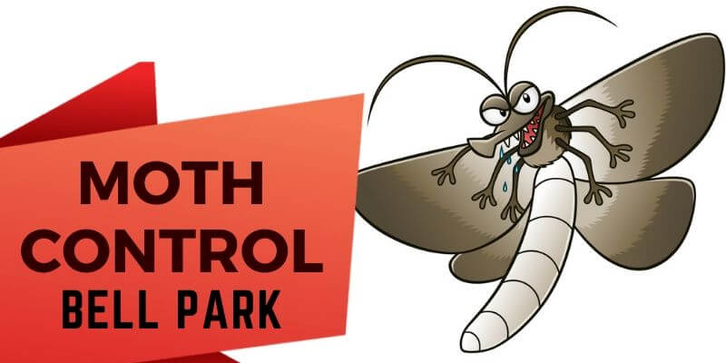 Moth Control Bell Park