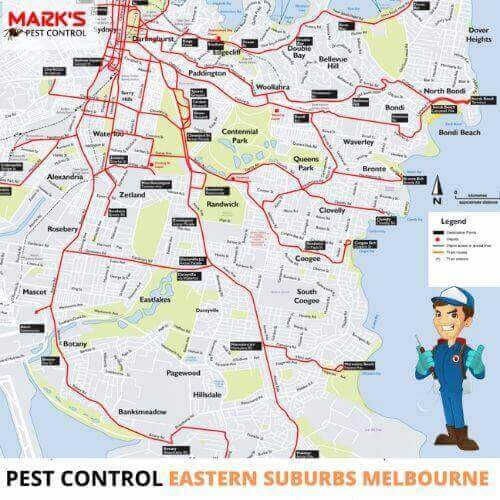 pest control in eastern suburbs