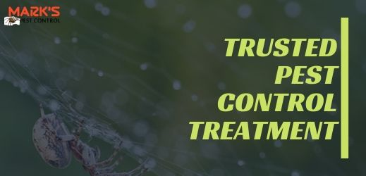Trusted pest control treatment