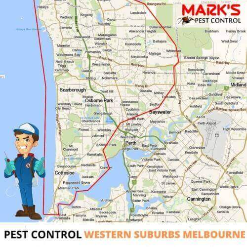 pest control in western suburbs