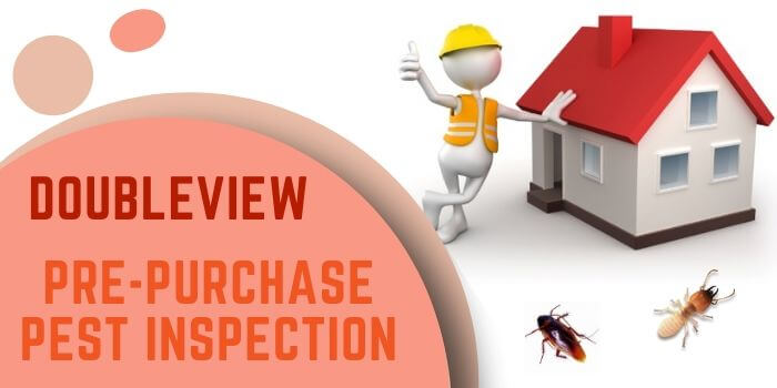 pre purchase pest inspection