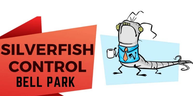 Silverfish Control Bell Park
