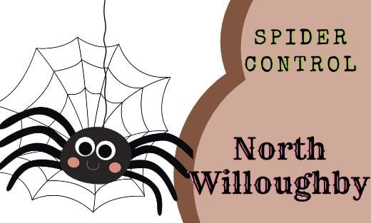 Spider Pest Control North Willoughby