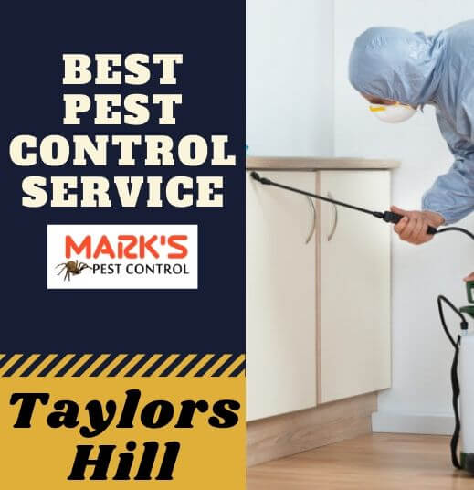 Pest Control Taylors Hill