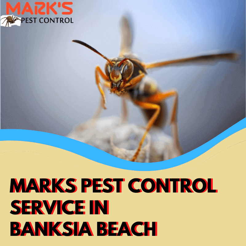 Marks Pest Control Service in Banksia Beach
