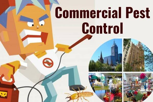 Commercial pest control Bundamb