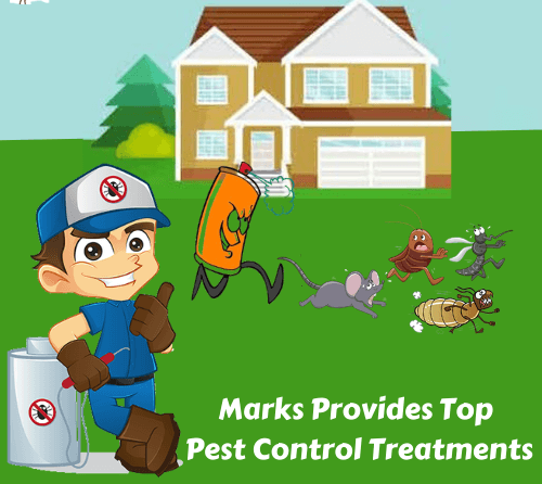 Pest treatments In Harristown
