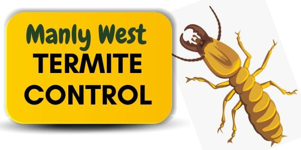 Termite control Manly West