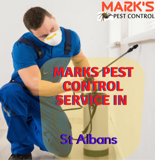 Marks Pest Control Service in St Albans