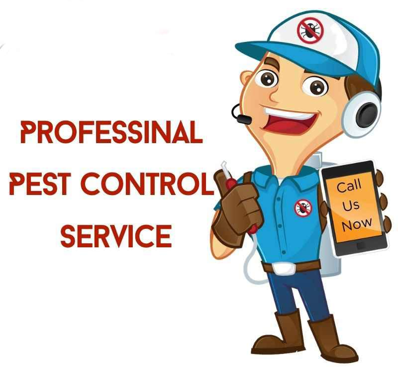 Pest Control Waterford West