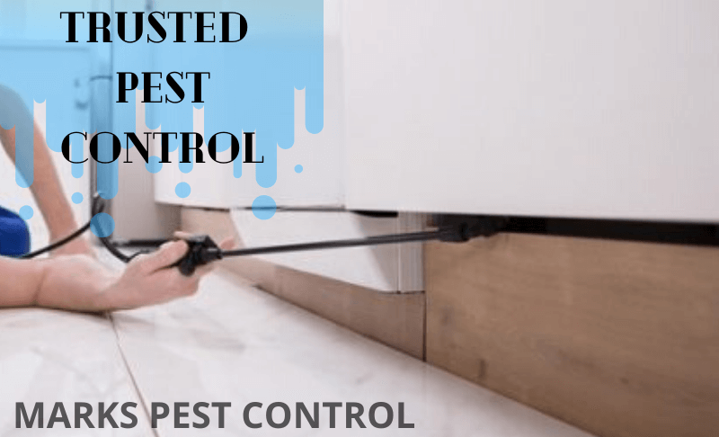 Trusted Pest Control