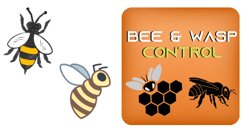 BEE AND WASP CONTROL