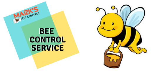 Bee Control Service- Marks Pest Control