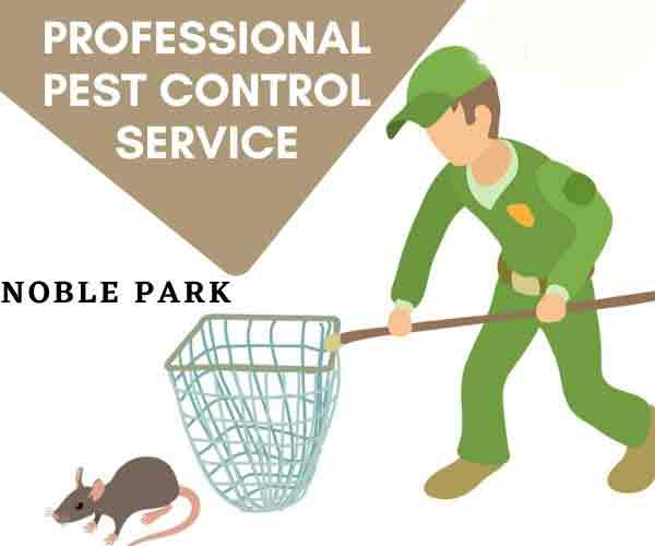 Best pest control Noble Park