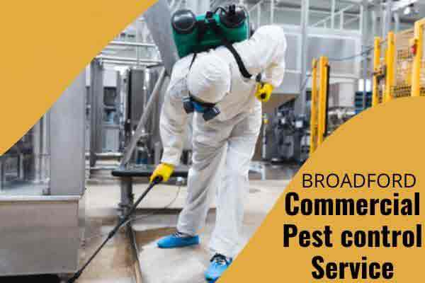 Commercial pest control Broadford
