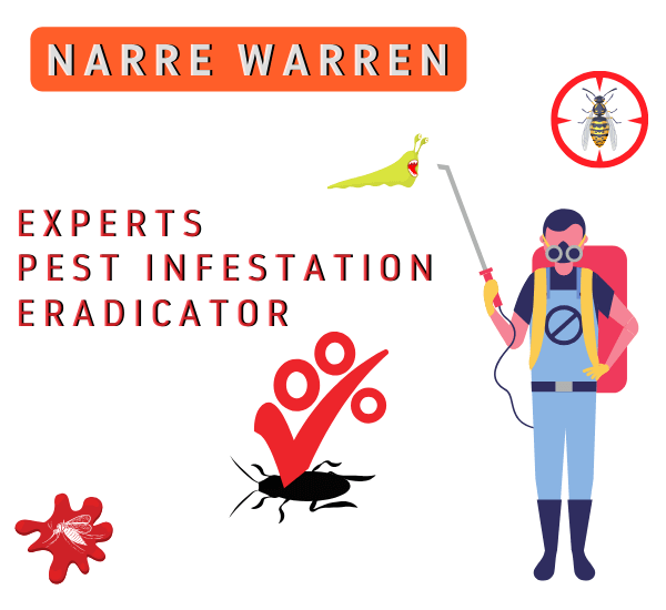 Experts Pest Infestation Eradicator in Narre Warren