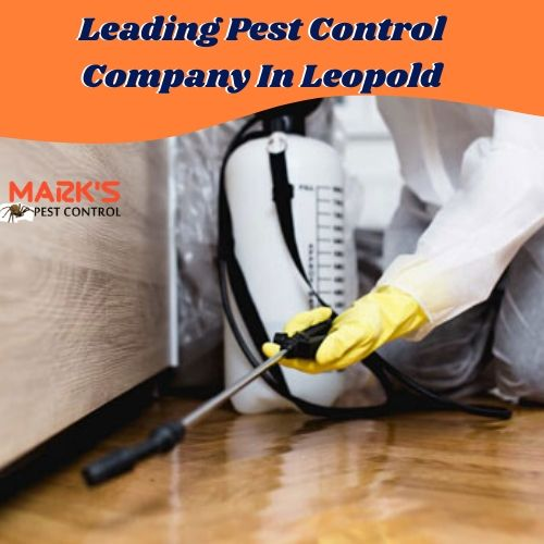 Leading Pest Control Company In Leopold