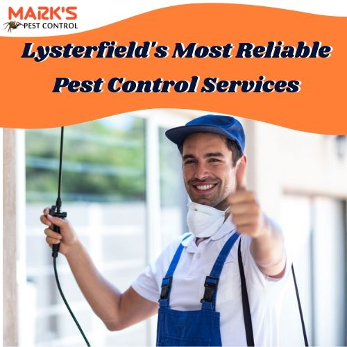 Lysterfield's Most Reliable Pest Control Services