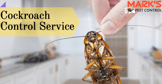 Marks Cockroach Control Service