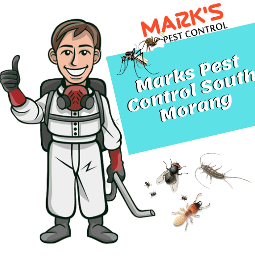Marks Pest Control South Morang