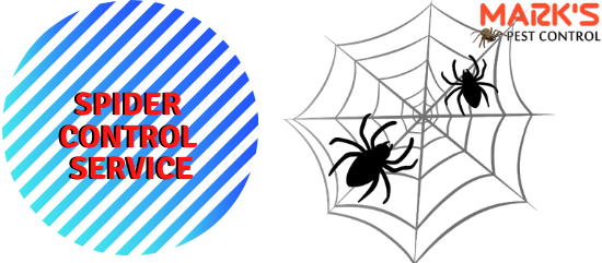 Marks spider control service